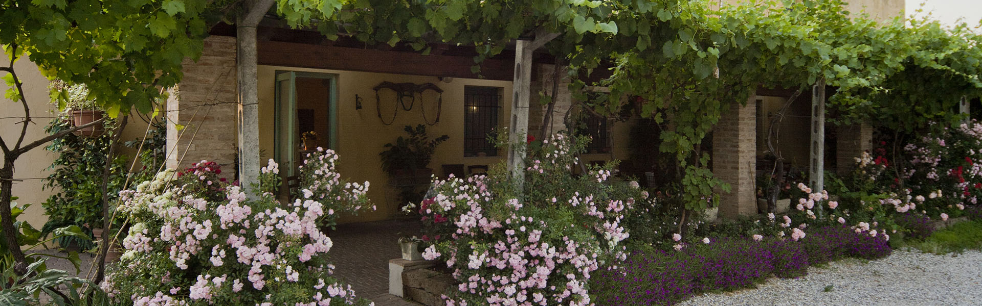 Agriturismo Corte Gaia Accomodation and Typical Cousine